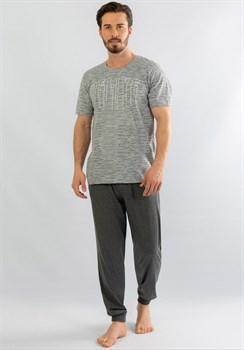Комплект мужской футболка и брюки - фото 10949