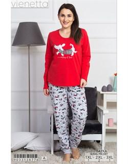 Пижама байка - фото 7737