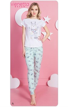 Комплект футболка брюки DREAM - фото 8094